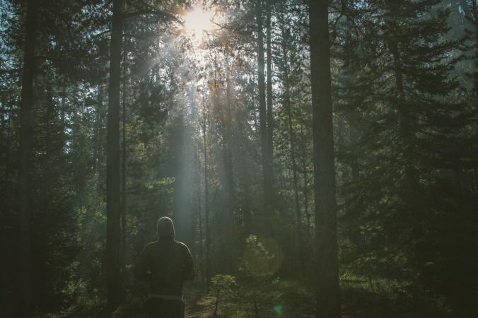 forest-running